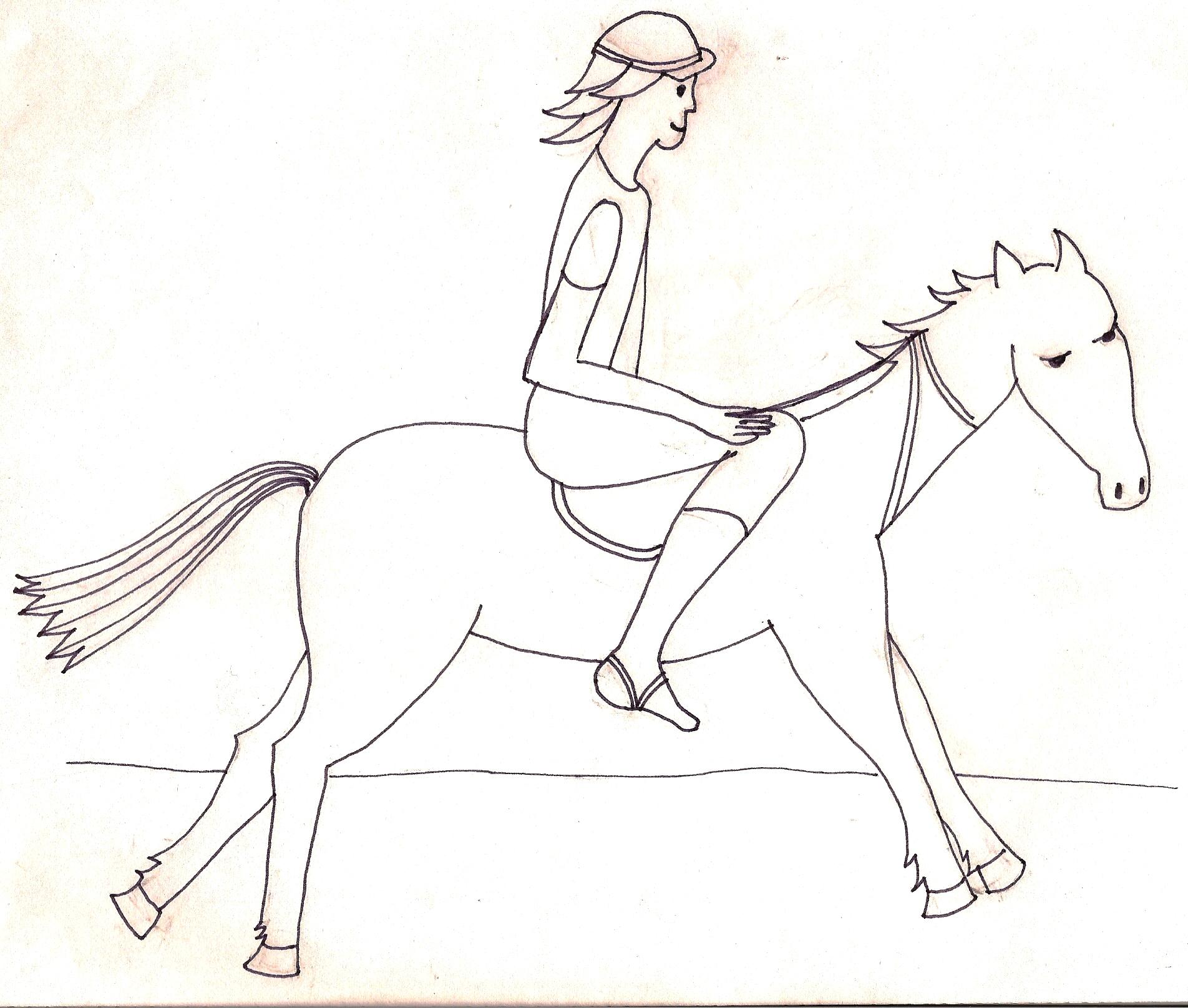 Jezdit na koni