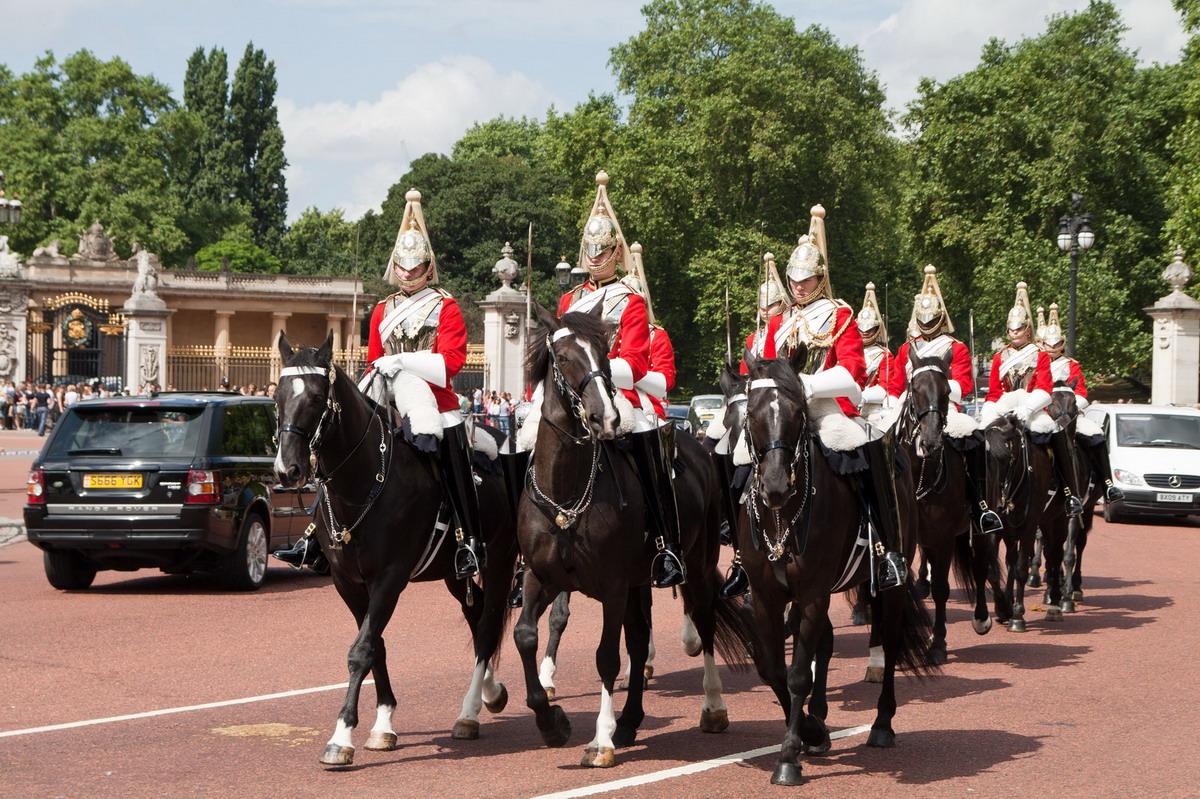 horse guard2.jpg