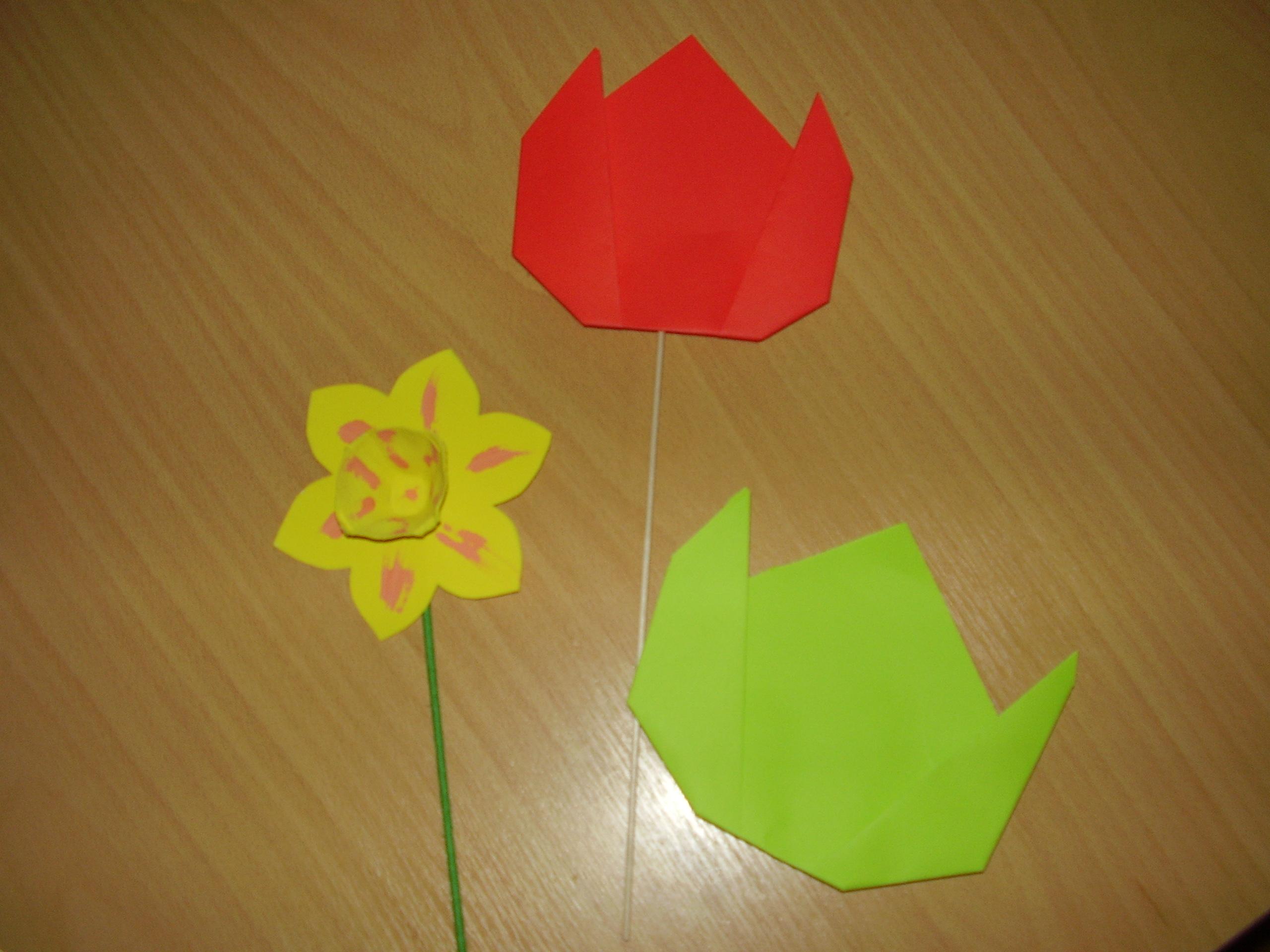 tulipány s narciskou