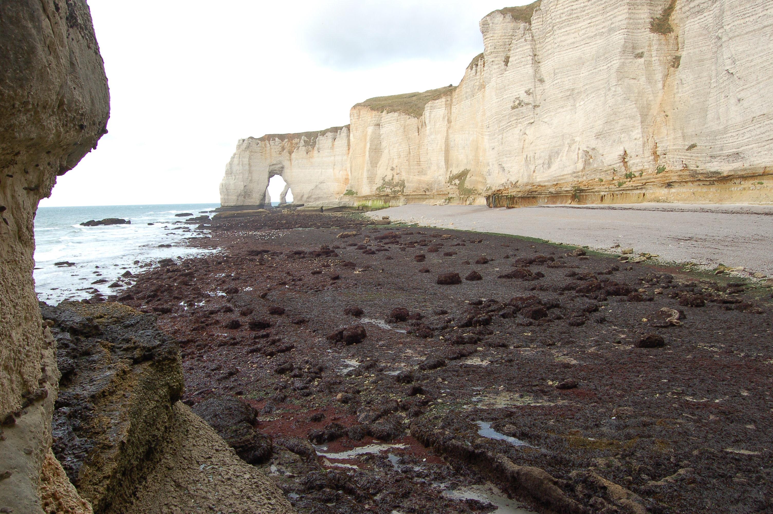 Etretat - pobřeží po odlivu V.JPG
