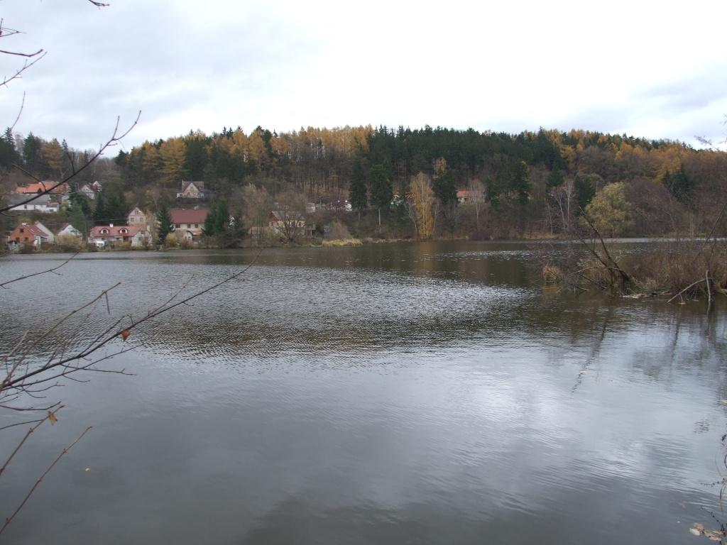 Přírodní památka Starý rybník