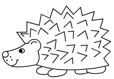 ježek