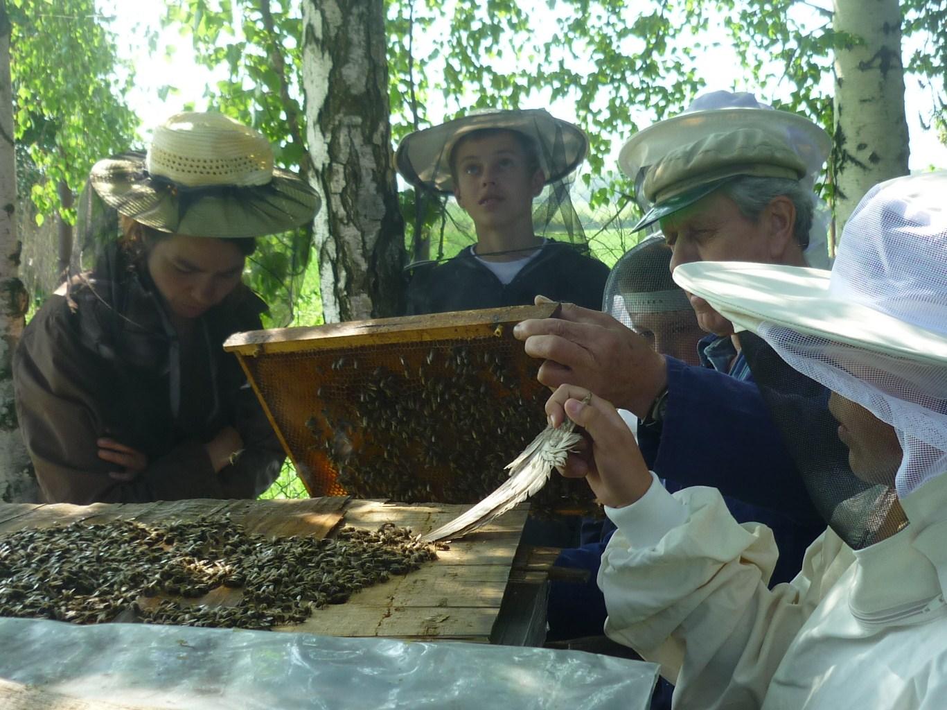 Na školní včelůnici 6.5.2011 034.JPG