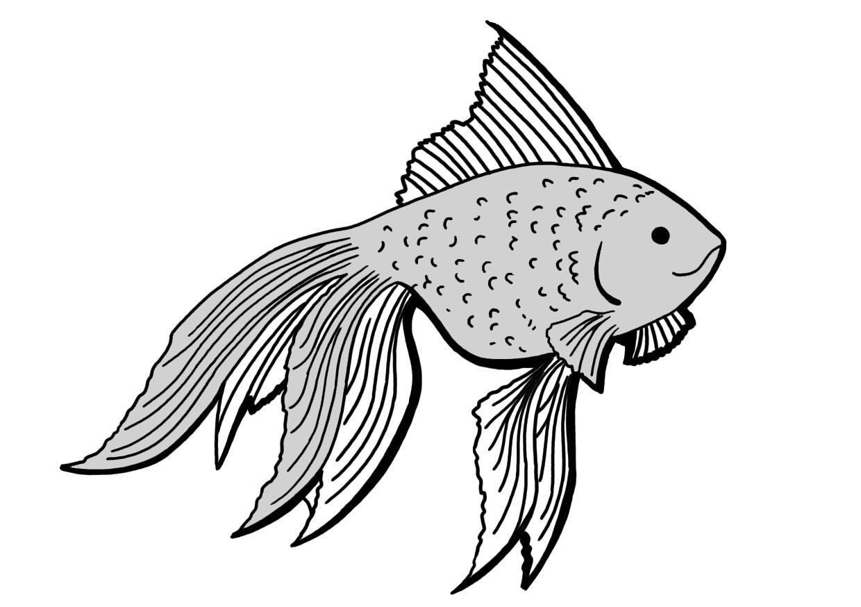 rybicka_GS.jpg