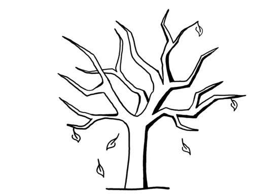 strom_opadany.jpg