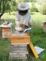 včelařska s kuřákem.jpg