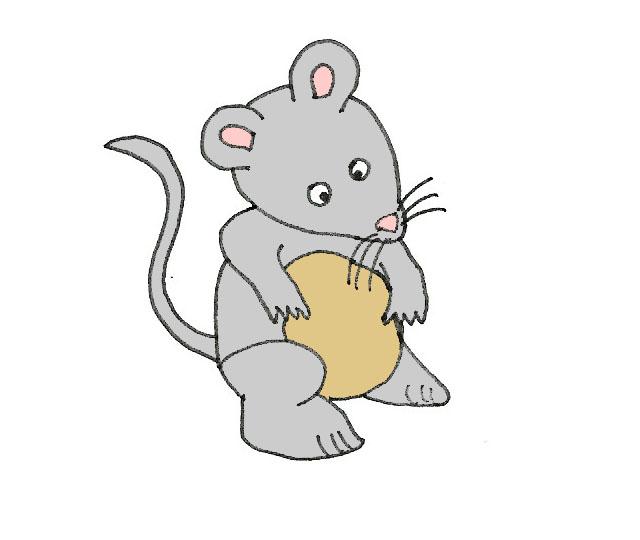 B-myš.jpg