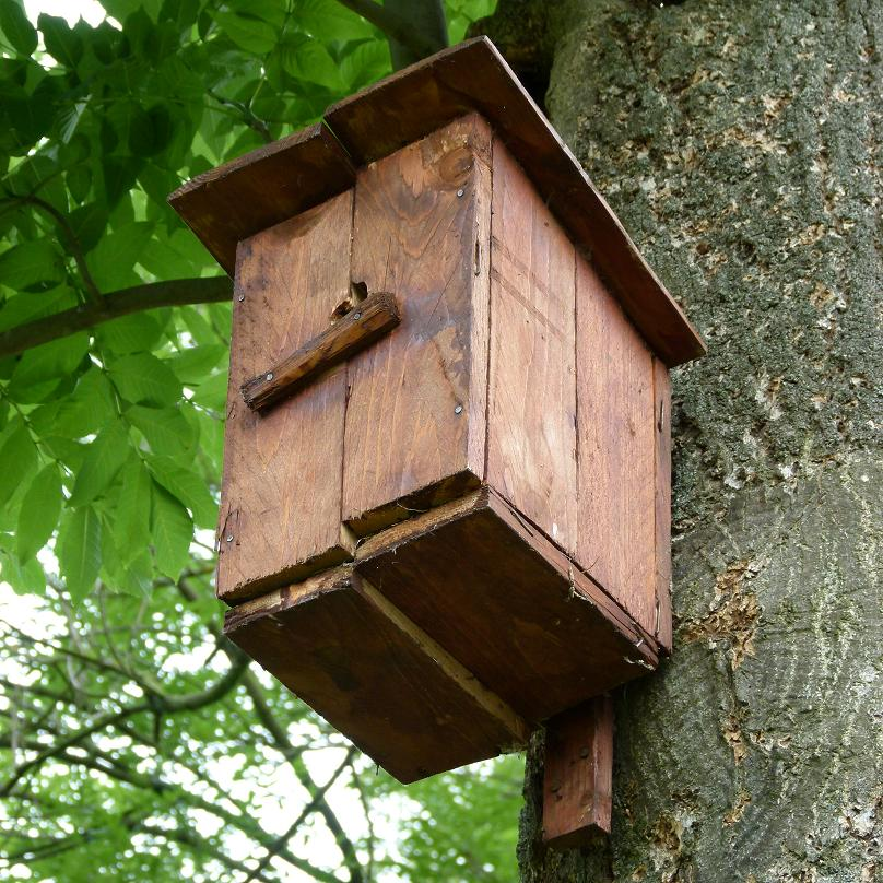 ptaci-budka.jpg
