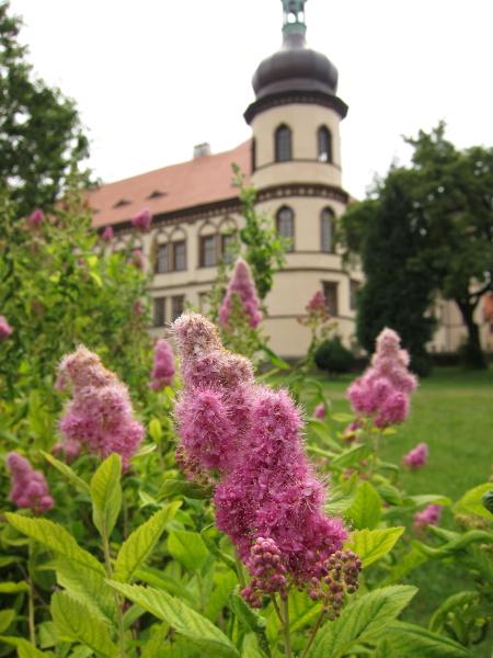 zamek-kostelec-nad-cernymi-lesy1.jpg