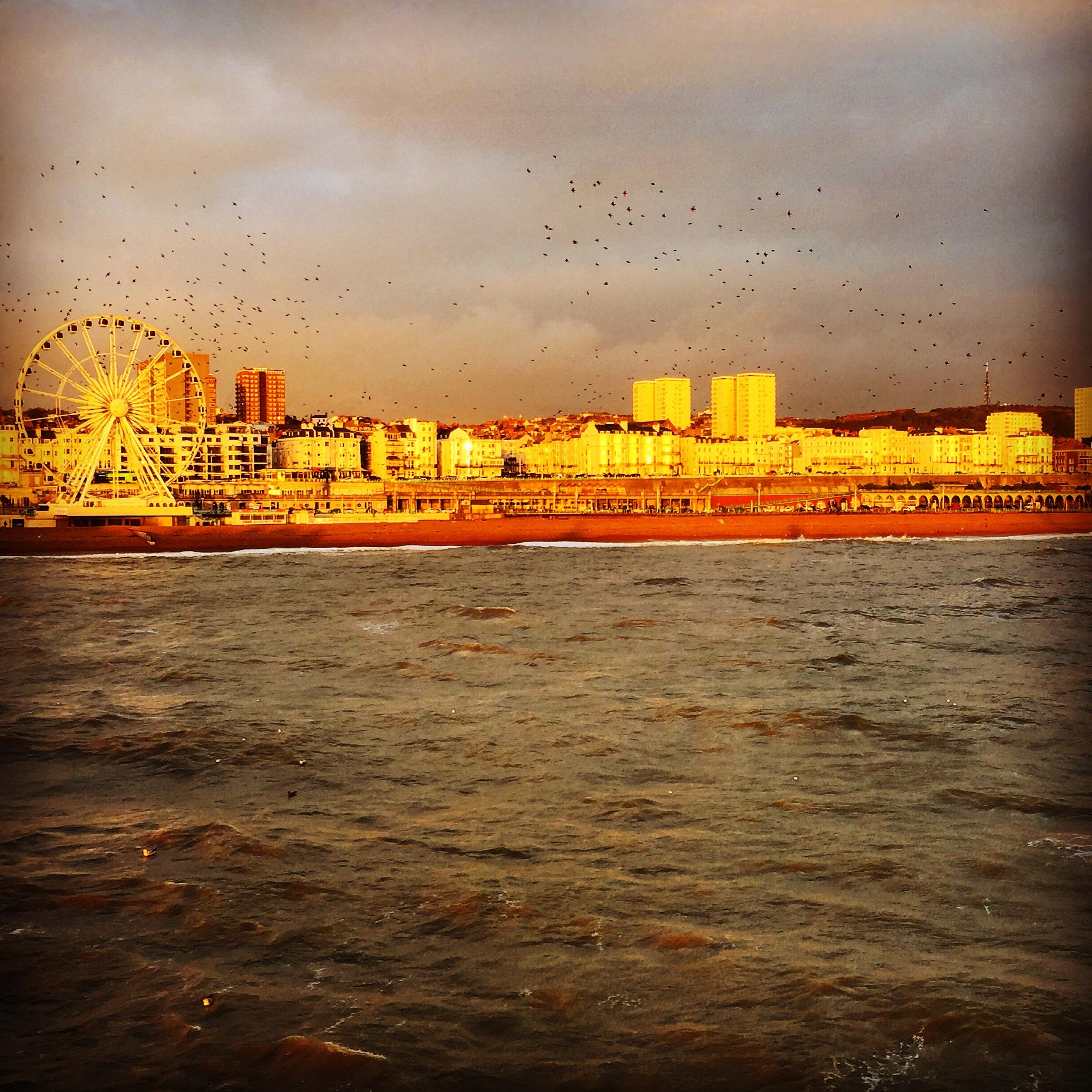 Brighton - pobřeží