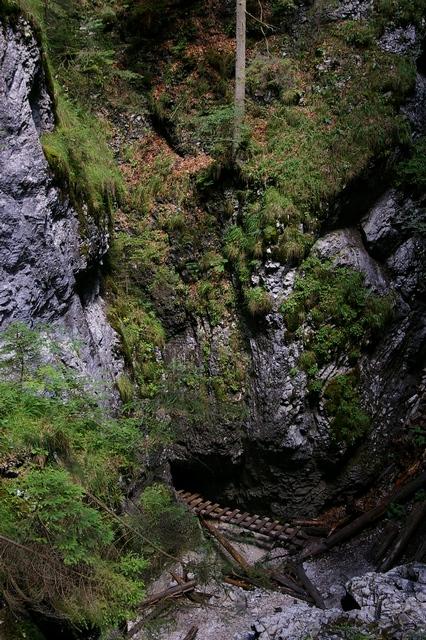 Srpen 2008 1 (23).JPG