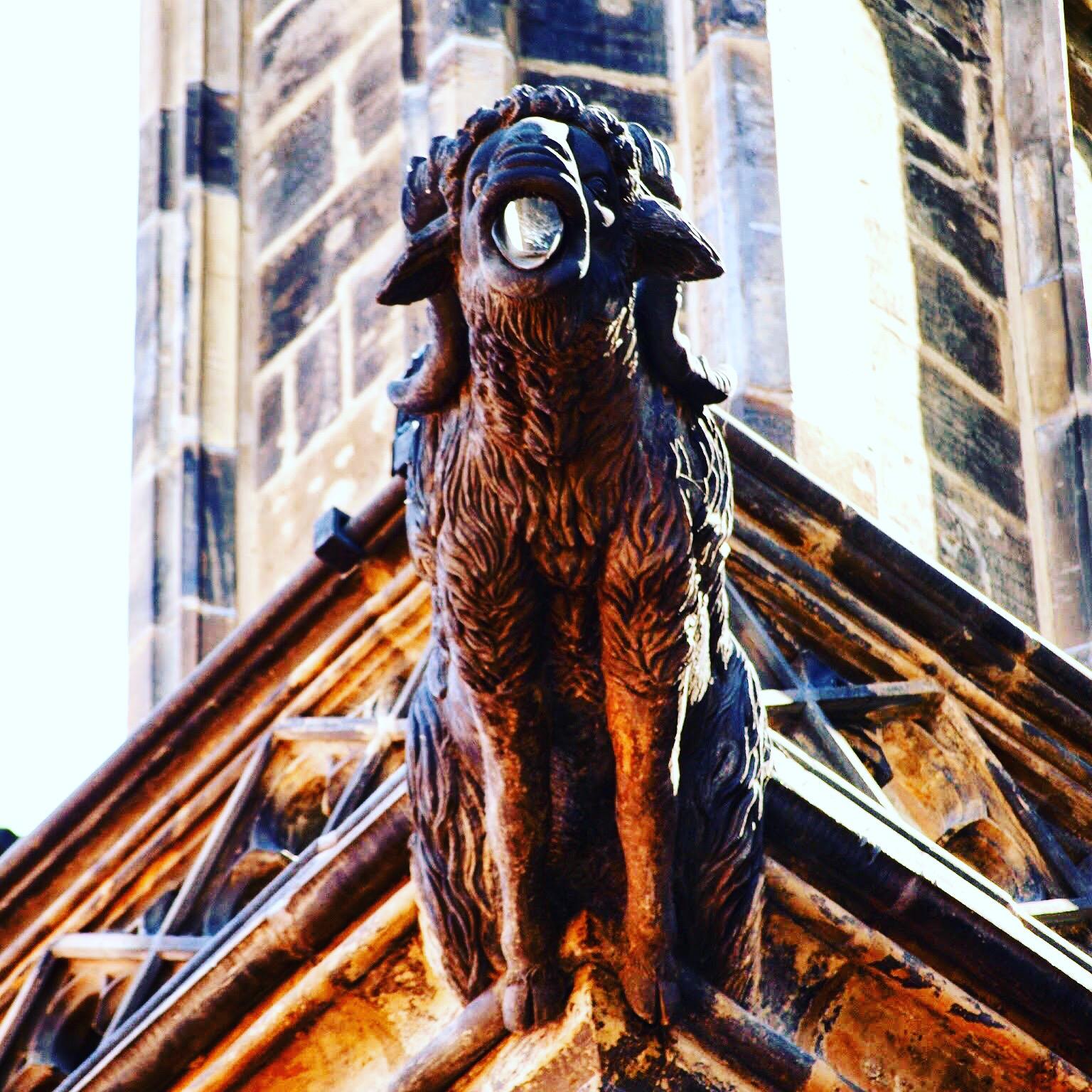 Chrliče katedrály