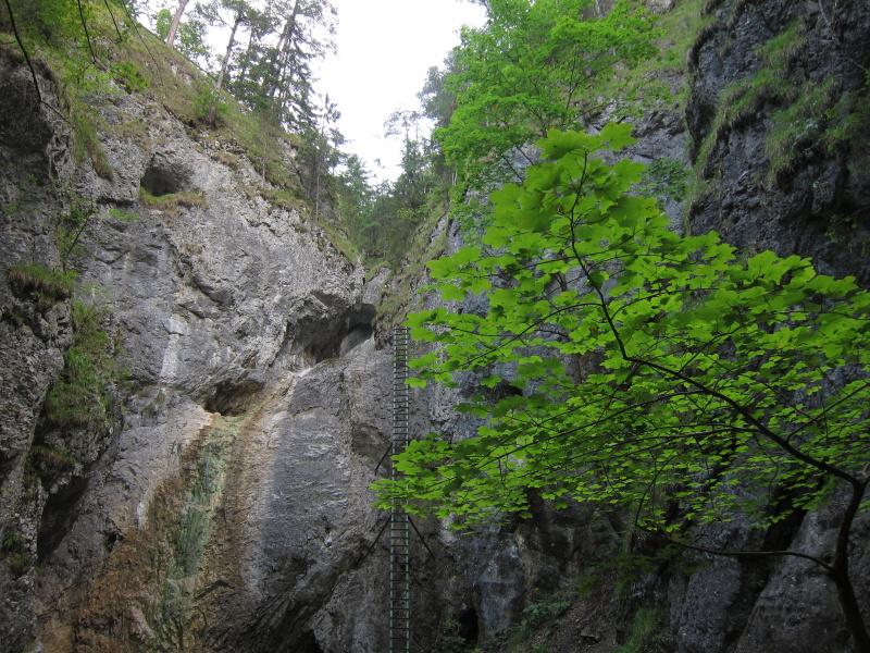 slovensky-raj6.jpg
