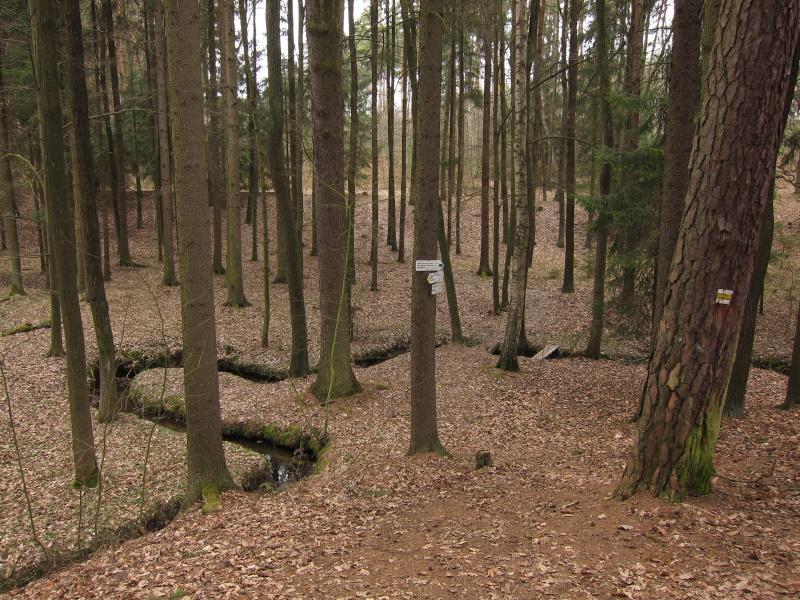 zelezne-hory-krasnicka-roklinka1.jpg