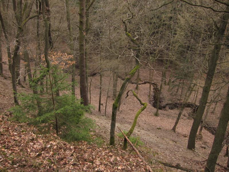 zelezne-hory-krasnicka-roklinka2.jpg