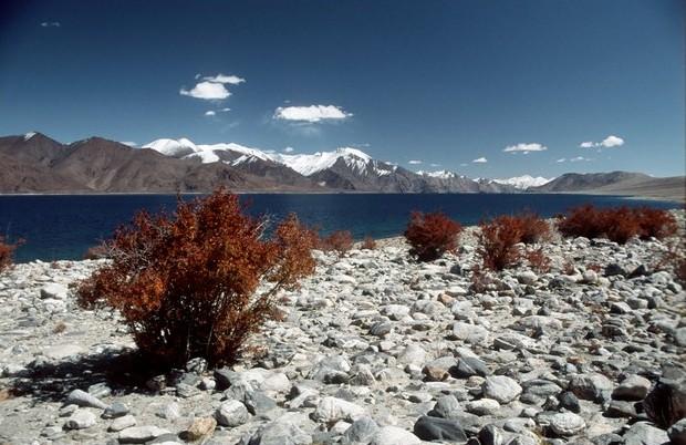 Slané jezero Pangong lake ve výšce 4200m na hranici s Tibetem