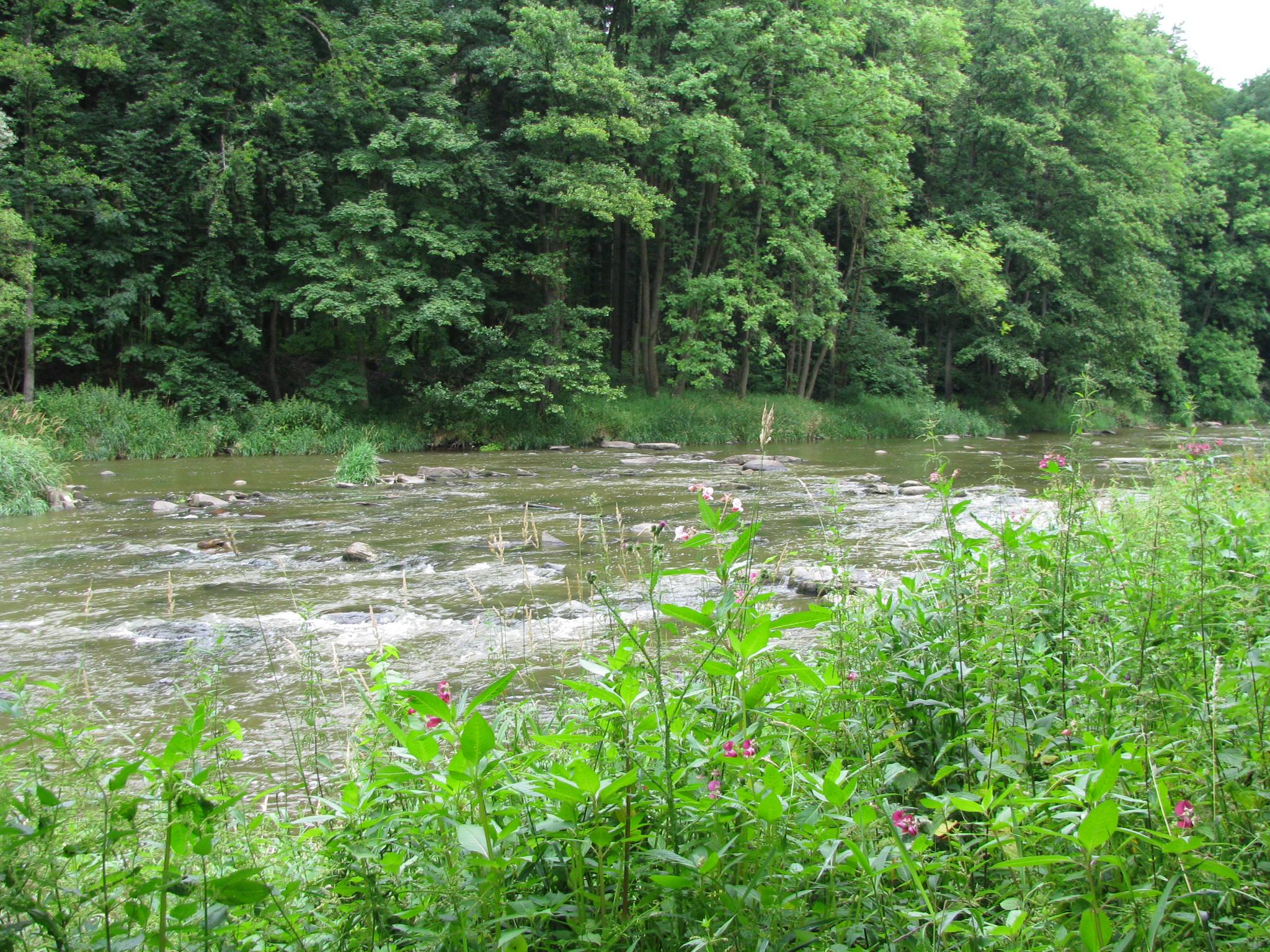 řeka I..JPG